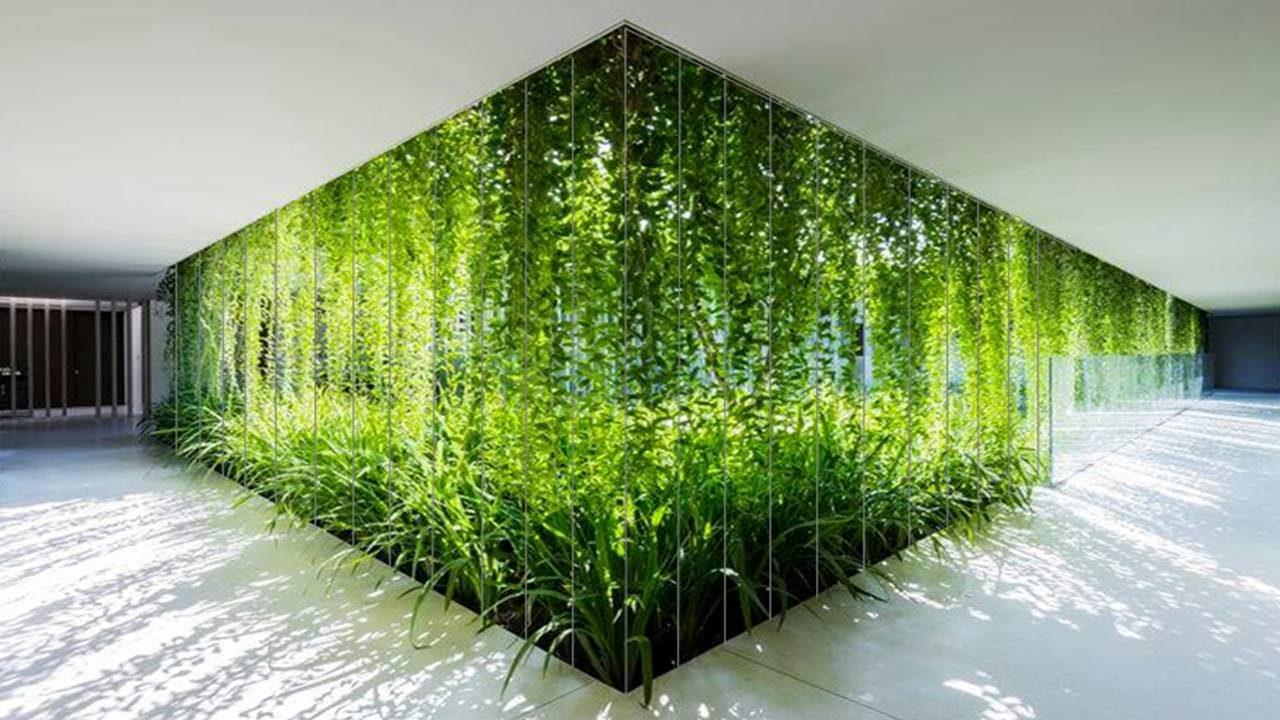 Green Facades Amp Screens Hanging Gardens