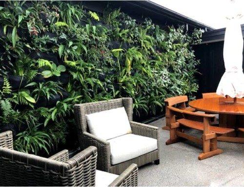 Taupo Courtyard Garden